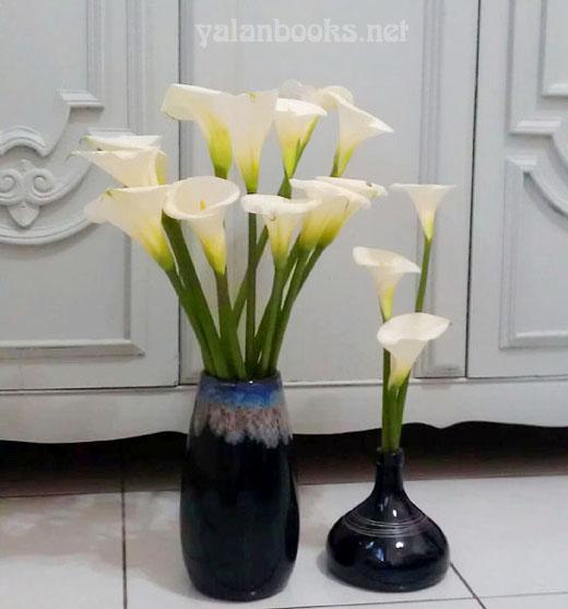 Flowers Romanticism  Photography 花卉摄影 浪漫主义 Yalan雅岚 黑摄会